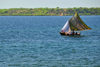 Fort-Libert�, Nord-Est Department, Haiti: fishing boat with recycled sails - photo by M.Torres