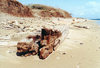Hawaii - Lanai island: remains of a wooden ship - photo by G.Frysinger