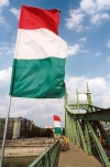 Hungary / Ungarn / Magyarország - Budapest: Hungarian flags - Liberation Bridge (photo by Miguel Torres)