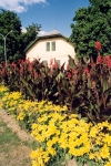 Hungary / Ungarn / Magyarorsz�g - Balatonf�red: vila and garden (photo by Miguel Torres)