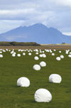 Iceland Hay bales and mountain (photo by B.Cain)
