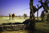 India - Thar desert, Gujarat: drawing water with a camel  - photo by E.Petitalot