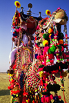 India - Jaisalmer, Rajasthan: decoration on a camel for the camel festival - photo by E.Petitalot