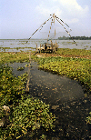 India - Cochin / Kochi: Chinese fishing nets - photo by W.Allgöwer