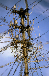 South India: cable tangle of a power and  telephone pole - third world - photo by W.Allgöwer