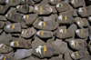 India - Ladakh - Jammu and Kashmir: Mani stones - stones inscribed, with mantra, as a form of prayer in Tibetan Buddhism - religion - Buddhism - photo by W.Allg�wer