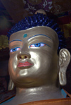 India - Ladakh - Jammu and Kashmir: blue eyed Buddha - photos of Asia by Ade Summers