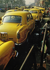 India - Calcutta / Kolkata (West Bengal): taxis in the front of Howard train station - yellow Hindustan Ambassadors - Indian cars - photo by E.Petitalot