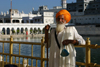 India - Amritsar (Punjab): Sikh visitor at the Golden Temple causeway - photo by E.Andersen