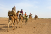 Jaisalmer, Rajasthan, India: camel caravan in the deset - photo by M.Wright
