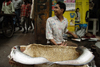New Delhi, India: fishmonger - street lifeof the old city - photo by G.Koelman