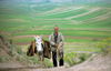 Iran - Fars province: a man and his donkey - rural scene - photo by W.Allgower