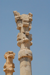 Iran - Persepolis: Gate of all the nations - columns of the central hall - double-bull in the capital - photo by M.Torres