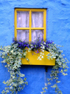 Ireland - Kinsale (County cork): window with flower box - blue house (photo by R.Wallace)