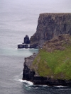 Ireland - Moher cliffs  (county Clare): like moss (photo by R.Wallace)