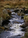 Ireland - Glenmalure valley (county Wicklow): mountain stream (photo by R.Wallace)