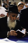 Israel - Jerusalem - study of the Torah - elderly Orthodox man - photo by Walter G. Allgöwer