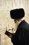 Israel - Jerusalem - rpraying from a prayer book - Jewish man with fur hat at the Western Wall - photo by Walter G. Allgöwer