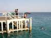 Israel - Eilat: diving in the Red Sea - photo by Efi Keren