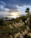Israel - Sea of Galilee / Lake Tiberias: dusk - photo by E.Keren
