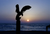 Israel - Caesarea - Hadera: bird and sunset - photo by Efi Keren