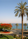 Israel - Eilat: view of the bay - Gulf of Aqaba / Eilat - photo by Efi Keren