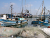 Israel - Acre / Akko: fishing boats in the Old Port - photo by E.Keren