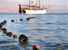 Eilat, South district, Israel: rope with floats on Red sea surface and the yacht L'Amie - Mifratz Eilat - photo by E.Keren