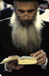 Israel - Jerusalem - study of the Torah - bearded Orthodox man - photo by Walter G. Allgöwer