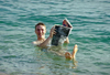 Israel - Dead sea: reading a newspaper while floating - buoyancy caused by high salinity - photo by J.Kaman