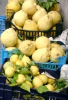 Italy / Italia - Positano: giant lemons (photo by R.Wallace)