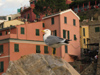 Italy - Vernazza, Cinque Terre  - seagul and houses - photo by D.Hicks