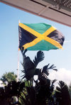 Jamaica - Kingston: Jamaican flag (photo by Miguel Torres)
