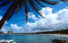 Jamaica - Ocho Rios: beach view - under a coconut tree - photo by Francisca Rigaud