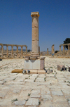 Jerash - Jordan: forum - plinth for a statue, now hosting a column - the Forum - oval plaza - Roman city of Gerasa - photo by M.Torres