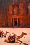 Jordan - Petra: Khazneh - Treasury - camels under the midday sun - UNESCO world heritage site - photo by M.Torres