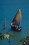 Kenya - Kilifi: boat - dow sailing in the Indian Ocean - photo by F.Rigaud
