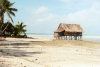 Kiribati - Tarawa: a dwelling by the sea (photo by G.Frysinger)