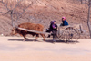 North Korea / DPRK - Chongju province: an up hill struggle - cart - photo by M.Torres