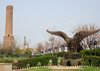 Erbil / Hewler / Arbil / Irbil, Kurdistan, Iraq: Minare Park - Mudhafaria Minaret and a topiary living sculpture of an eagle - photo by M.Torres
