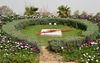 Erbil / Hewler / Arbil / Irbil, Kurdistan, Iraq: floral clock at Minare Park - photo by M.Torres