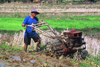 Laos: a ploughman in a rice field with a small tractor - photo by E.Petitalot