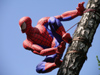Latvia / Latvija - Riga: spiderman - spider man (photo by Alex Dnieprowsky)