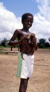Grand Bassa County, Liberia, West Africa: Buchanan - boy with mongooses - photo by M.Sturges