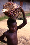 Grand Bassa County, Liberia, West Africa: Buchanan / Gbezohn - boy with fruit on his head - photo by M.Sturges