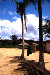Grand Bassa County, Liberia, West Africa: village and palms - photo by M.Sturges