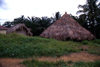 Grand Bassa County, Liberia, West Africa: thatched roof huts - village scene - Africa - photo by M.Sturges