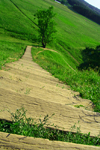 Lithuania - Kernave: Lithuania-green land - stairs - photo by Sandia