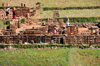RN2, Antananarivo Province, Madagascar: mud brick industry in the middle of rice fields - photo by M.Torres
