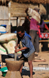 Tsimafana, Belo sur Tsiribihina district, Menabe Region, Toliara Province, Madagascar: boy preparing cassava flour - tapioca - mortar and pestle - village life - photo by M.Torres